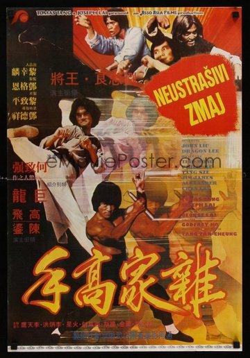 fcf_nustrasivi-zmaj_the-dragon-the-hero_1979_poster