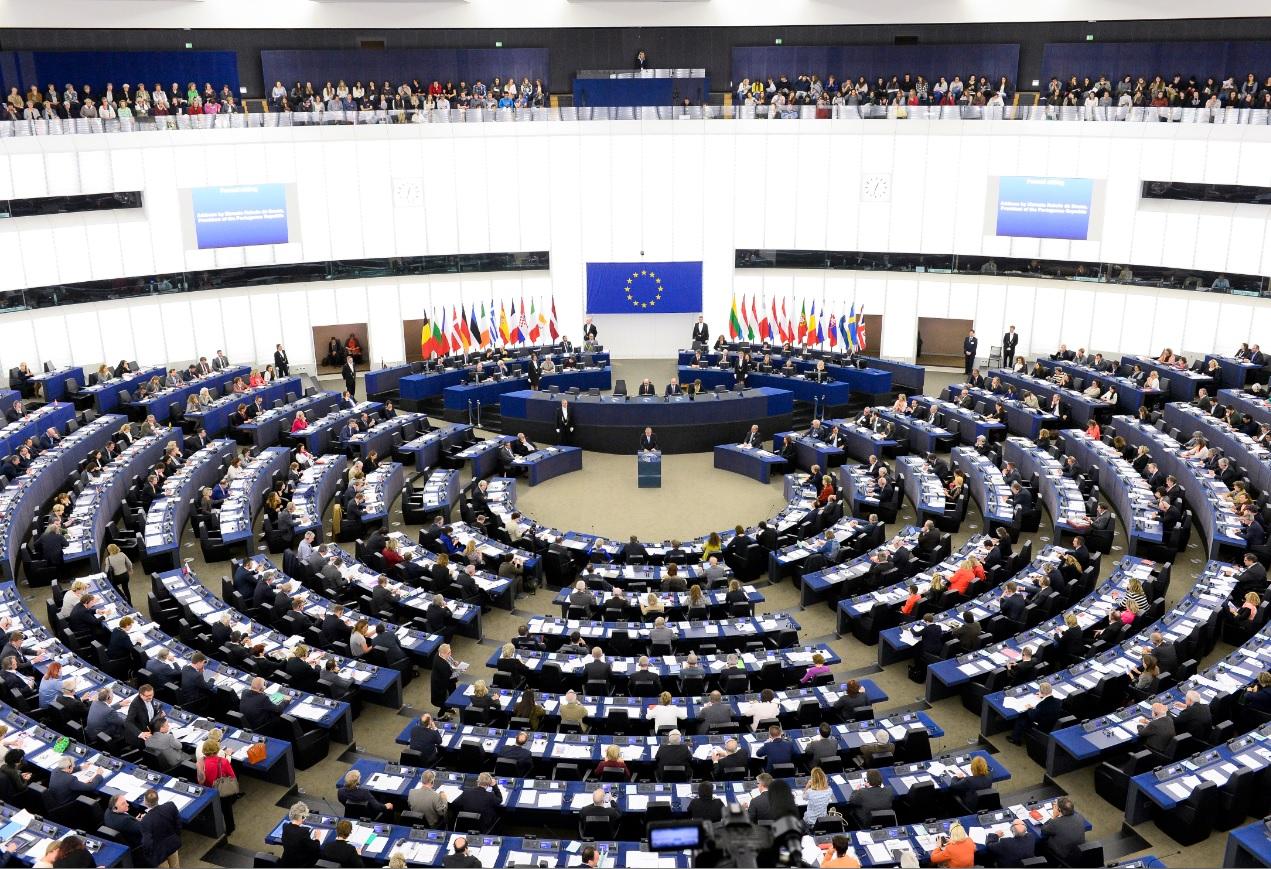 Slikovni rezultat za Održani izbori za EU parlament